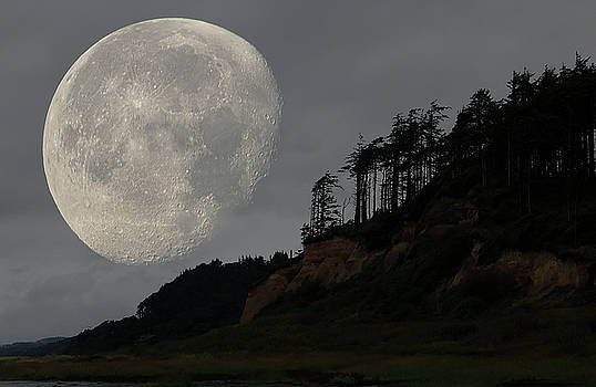 Moon at Roosevelt Beach WA by Bob Cournoyer