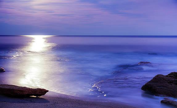 Moon Dance by Jo Ann Tomaselli