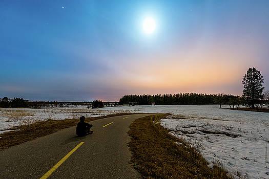 Moon Dog by Nebojsa Novakovic