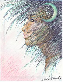 Moon Goddess by Christine Winters