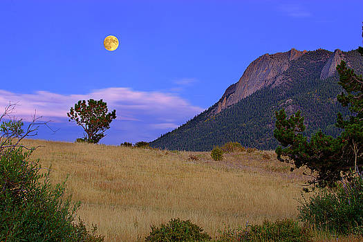 Moon Gold by Jeff Jewkes