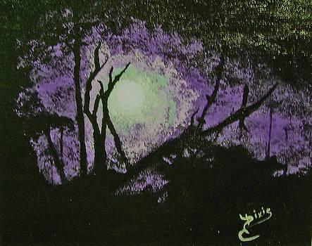 Moon Haze by Dixie Hester