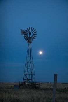 Moon in Blue by Shirley Heier