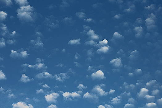 Moon in the Morning Sky by Adrienne Christian