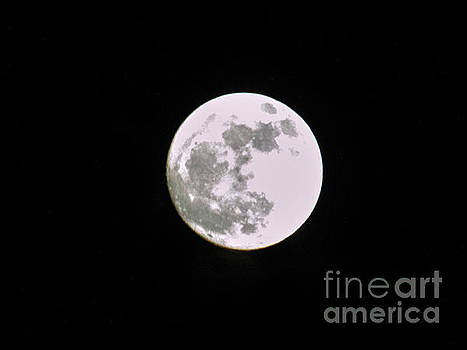 Moon by Judy Hall-Folde