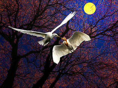Bliss Of Art - Moon kiss