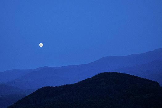 Moon light at Aromahoney by Julien Van Dommelen