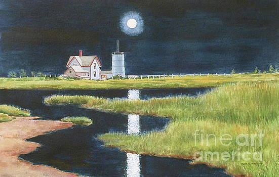 Moon Light by Karol Wyckoff