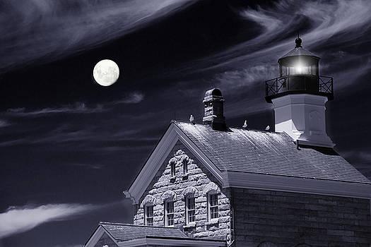 Moon Light by Robin-Lee Vieira