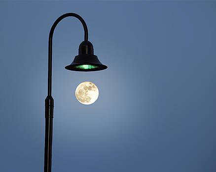 Moon Lighting by Tom McCarthy