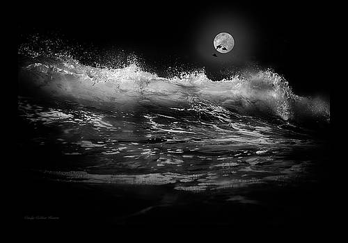 Moon-lit Wave by Cindy Collier Harris