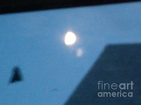 Moon Moth by Iris Newman