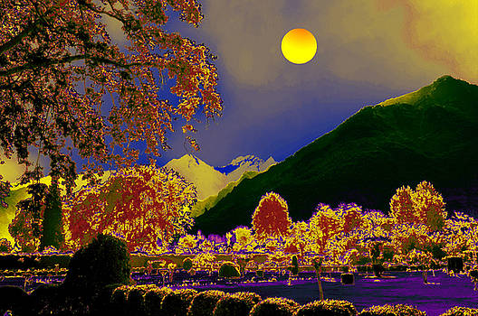 Bliss Of Art - Moon Night and Colours