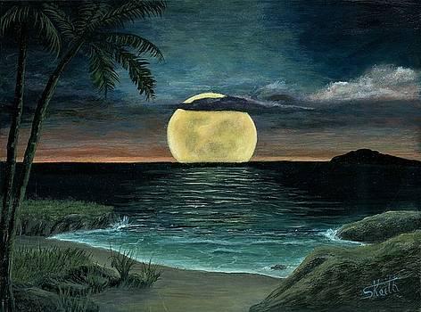 Moon of My Dreams III by Sheri Keith
