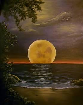 Moon of my Dreams by Sheri Keith