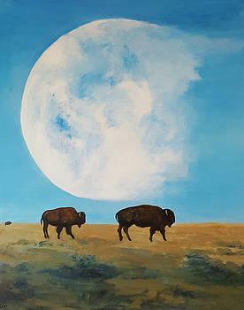 Moon over San Marcos by Rita Valdez