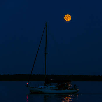 Moon Over the Dock by Lonnie Paulson