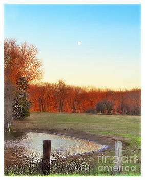 Moon Over The Pond by Marcel  J Goetz  Sr