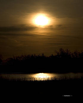 Moon Over the Pond by Tom Buchanan