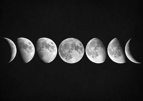 Moon phases by Zapista Zapista