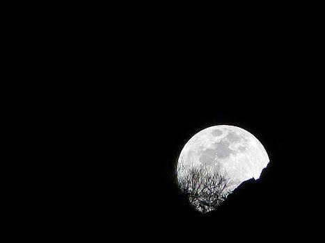 Jeff Brunton - Moon Rise 1
