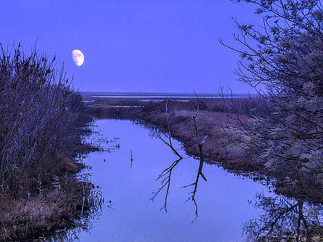 Bruce Bottomley - Moon Rise over Slough