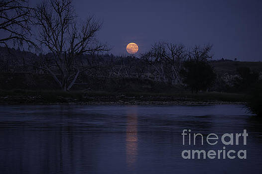 Moon Rise Over The Tongue by Shevin Childers