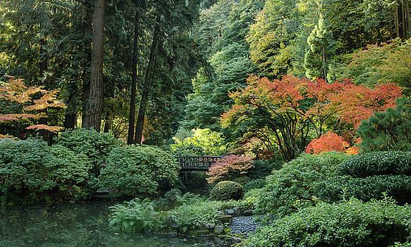 Moonbridge Autumn Serenade by Don Schwartz