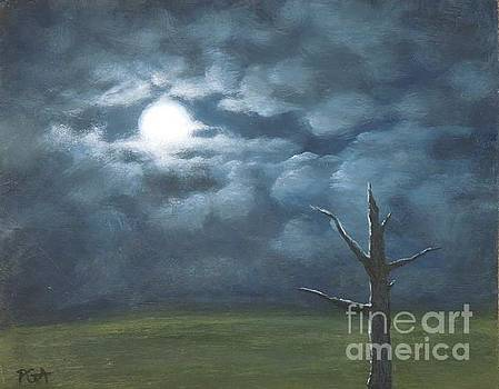 Moonglow by Phyllis Andrews