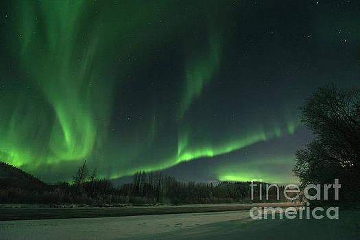 Moonlight Aurora by Priska Wettstein
