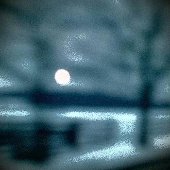 Moonlight and Snow by Deborah Rosier