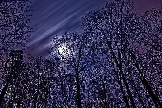 Moonlight Glow by Rod Kaye