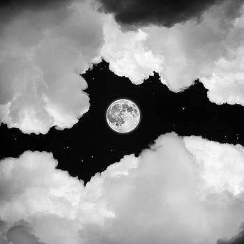 Moonlight by Ian David Soar