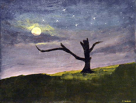 Moonlight Tree in Meadow by Tara Cordero