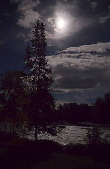 Mary Lee Dereske - Moonlight on the River