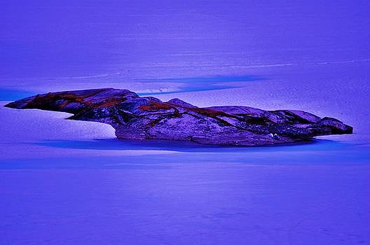 Moonlight On Tundra Ice by Helen Carson