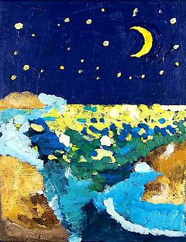 Moonlight over the Ocean by Jeremy Fern