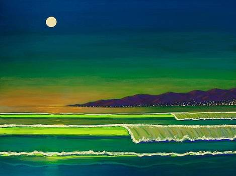 Moonlight Over Venice Beach by Frank Strasser