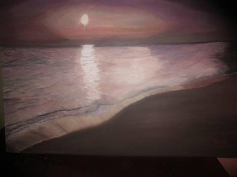 Moonlight Reflections by Zeenath Diyanidh