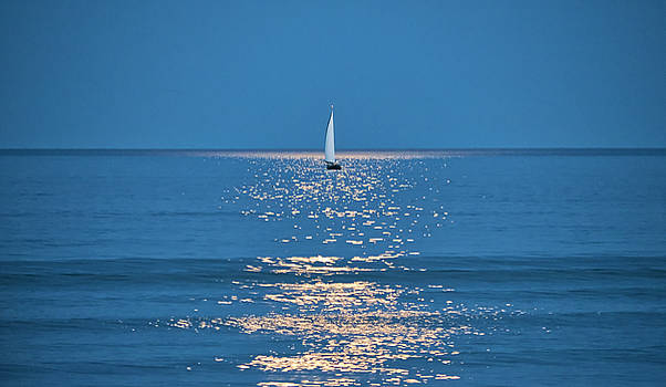 Steven Ralser - Moonlight Sail 2 - Ogunquit Beach - Maine