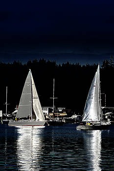 Moonlight Sailing by David Patterson