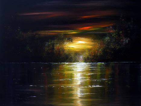 Moonlight Shadows by Ann Marie Bone