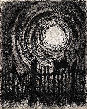 Moonlight Sonata by Rachel Christine Nowicki