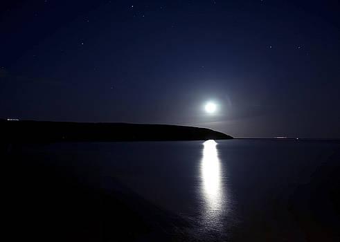 Svetlana Sewell - Moonlight