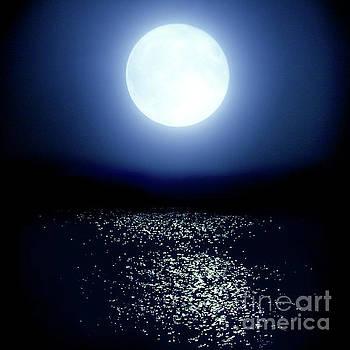 Moonlight by Tatsuya Atarashi