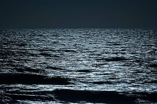 Moonlight waves by Nancy Landry