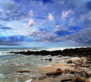 Ricardos Creations - Moonlit Beach Seascape at Wisdom Beach Florida C2