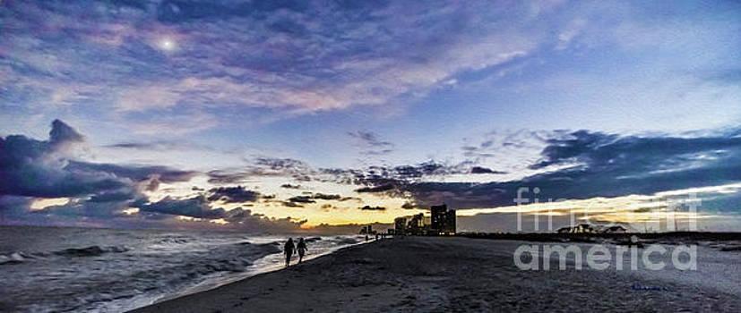 Ricardos Creations - Moonlit Beach Sunset Seascape 0272C