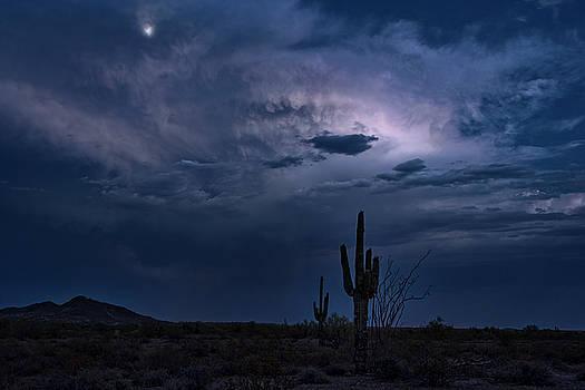 Moonlit Desert Night by Saija Lehtonen