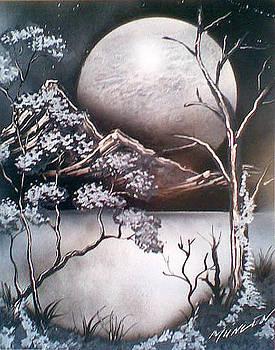 Moonlit Ivy by Jonathan Munden